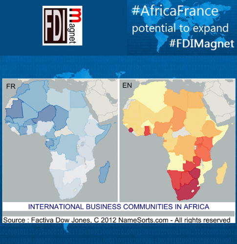 2015_FDIMagnet_AfricaFrance